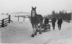 Ploughing in Snow